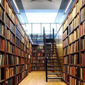 Библиотеки Аютинска